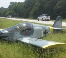 Plane Covered in Nazi Design Lands on Georgia Highway