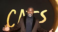 Idris Elba slams theory celebs are being paid to say they have coronavirus: 'Absolute bulls***'