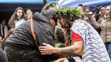 'A new Hawaiian Renaissance': how a telescope protest became a movement