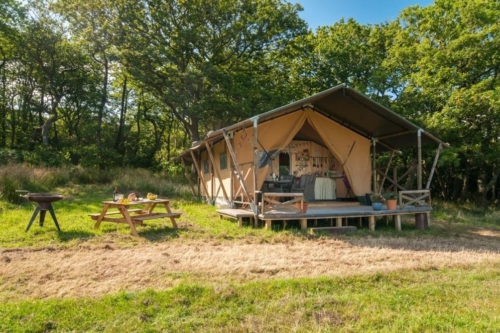 """<p>Perched at the top of a gently sloping meadow on an organic farm deep in the Dorset countryside, <a href=""""http://www.qualityunearthed.co.uk/accommodation/cabins/deerland-safari-lodge"""" target=""""_blank"""">Deerland Safari</a> is a stylish two-bedroom safari tent where you'll find no internet or TV, making it ideal for the whole family to make the most of the great outdoors. Cooking is done on a small gas hob, lighting is provided via candles and torches, and there's a charcoal brazier on the deck for chilly evenings. The safari tent has one double bedroom and one with bunk beds, plus a separate hut with an eco-loo and hot shower. Kids will love pottering in the fields and watching out for wildlife including deer. From £124 per night (minimum two-night stay applies).</p>"""