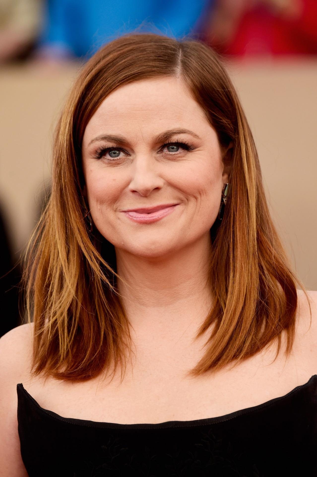 Amy Poehler Goes Brunette At 2016 Sag Awards