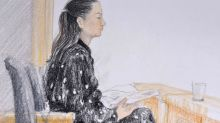 Meng Wanzhou extradition hearings finally begin, with defence blasting fraud case against Huawei CFO as 'fiction'