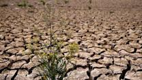 Expert: West Coast in drought of the century