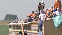 Brazilian prisoners riot for better conditions