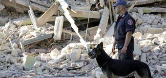 Terremoto, Enpa: Oltre 200 animali soccorsi dopo sisma