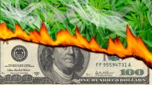 From cash to ash: Pot companies have just months to live on average, study finds