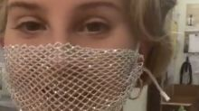 Lana Del Rey Was Slammed for Wearing a Mesh Face Mask to Meet Fans
