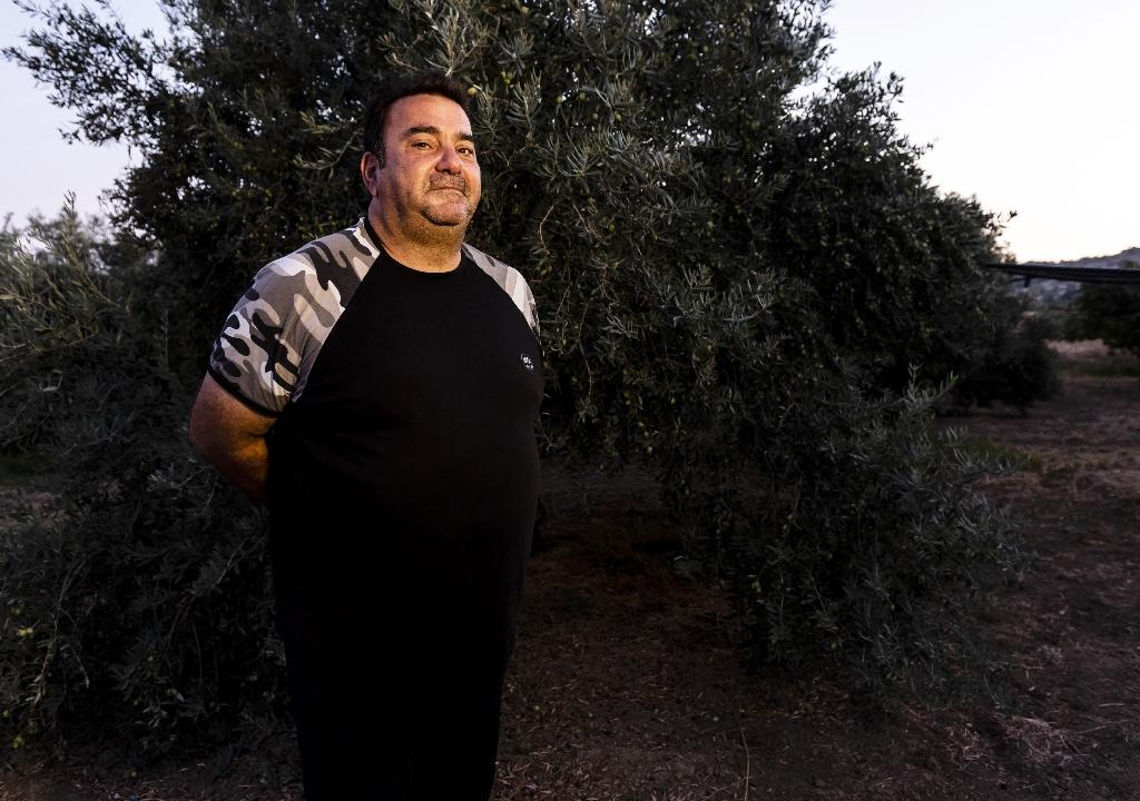 Farmer Andreas Fotiou farms olives on Akrotiri and fears he could miss out on vital subsidies or even be forced to pay tariffs, if Britain crashes out of the EU without a withdrawal agreement (AFP Photo/Iakovos Hatzistavrou)