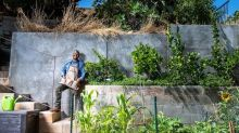 He turned his concrete patio in East L.A. into an edible garden with fruit trees