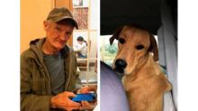 'Poor Charlie': Man forgives dog who accidentally shot him in the back during hunting trip