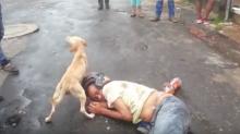Borracho duerme en la calle, ¡y su perro lo defiende!