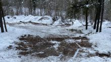 Cabin seized by Sask. gov't 'integral' to trapper's way of life, First Nations leaders say, urging its return