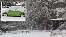 Australian towns blanketed by snow with 'insane' weather set to continue for the weekend