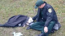 Injured dog comforted by Florida cop wins over internet