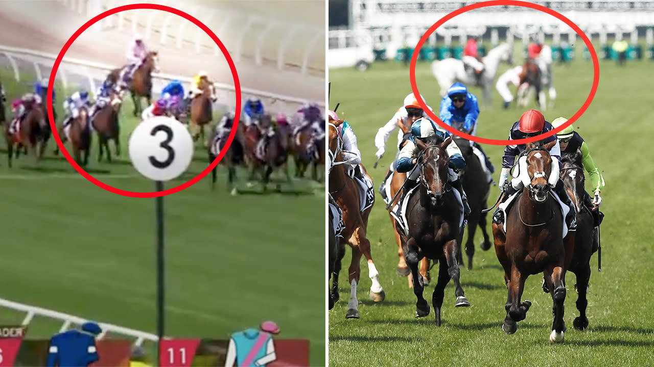 'No freak accident': Brutal truth about Melbourne Cup horse death – Yahoo Sport Australia