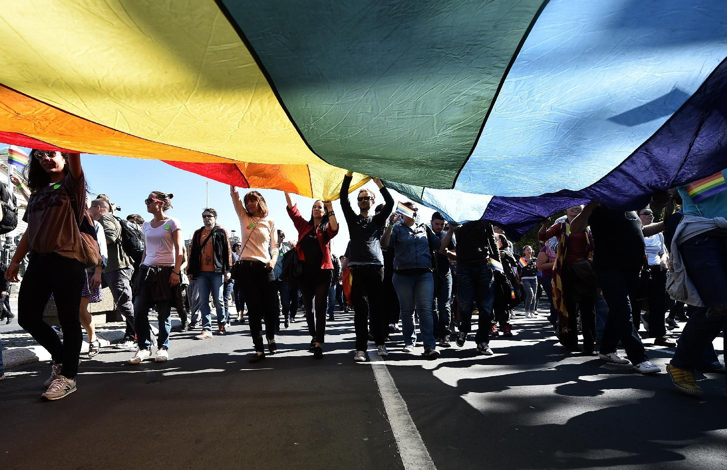 Gay activists hold a rainbow-coloured flag during the Pride Parade in Belgrade on September 28, 2014 (AFP Photo/Andrej Isakovic)