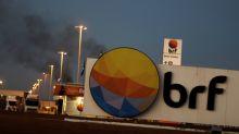 Key shareholders in Brazil's BRF present board candidates, seek new chairman