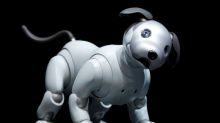Sony revives pet AI project with updated AIBO robot dog