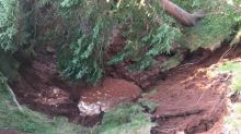 'It just collapsed': large sinkhole appears in wooded area in Oxford, N.S.