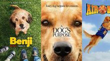 20 Heartwarming Dog Movies That Just Might Make You Cry
