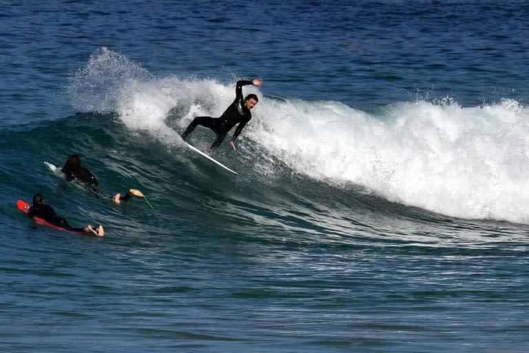 Surfer Seriously Injured In Australia Shark Attack