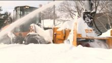 Snowplows can stay another year, says council