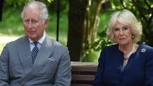 Wild claims Charles and Camilla are headed for divorce