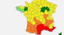 Allergies aux pollens : le sud de la France en alerte rouge
