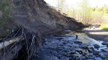 Replacement plans in the works for 11 crumbling bridges in Mill Creek Ravine