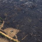 Brazil sends in army to tackle devastating Amazon fires as thousands protest against president