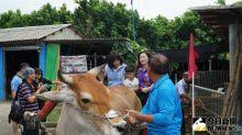 芳苑海牛學校正式開學 農委會許可立案