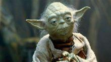 Descubren que Yoda sería originario ¡de Hawái!