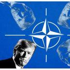 Who Needs NATO?