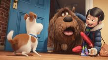 The Secret Life Of Pets Passes $800 Million Mark At The Box Office