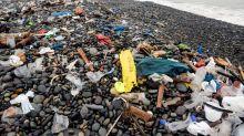 I batteri mangia-plastica che possono ripulire i nostri oceani