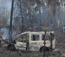 Wildfire toll hits 45 in Portugal-Spain but rain brings respite