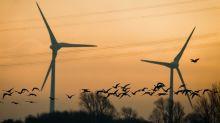 Das grüne Dilemma: Die Rufe nach Regeln für Nachhaltigkeit in der Finanzbranche werden lauter