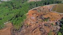 Kranji woodland incident: Area equal to 6 football fields mistakenly cleared – JTC