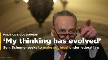 Pot politics: Schumer joins politicians rethinking marijuana