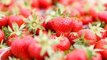 Mehr Erdbeeren auf deutschen Feldern