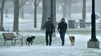 Downtown Chicago and other lakefront areas get lake effect snow