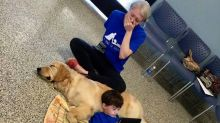 Mother cries seeing her autistic son bond with service dog