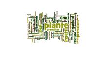CNR - 12 borse di studio per Scienziati naturali, Scienziati Agrari, Biologi, Biotecnologi e non solo.