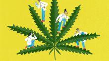 ¿Tienes corazón para la marihuana?