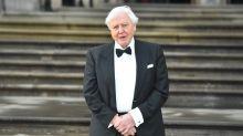 Cheryl Baker among stars praising David Attenborough's climate change warning