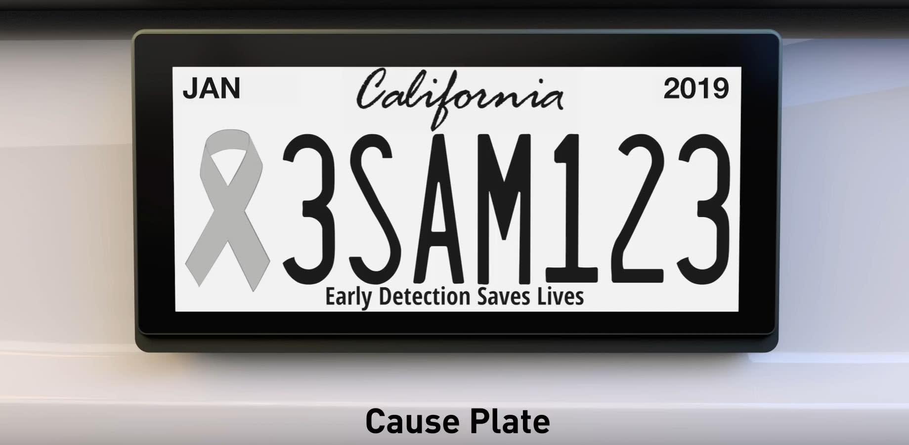 Digital license plate pilot program begins in California