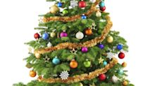 The Top Christmas Tree Trends of 2015