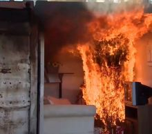 Authorities Release Video Showing the Potential Hazards of Not Watering a Christmas Tree