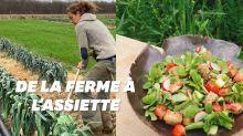 Chef et maraîcher, la formule gagnante du restaurant Mûre à Paris