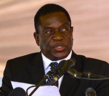 Mnangagwa: Zimbabwe's 'Comeback Crocodile'?